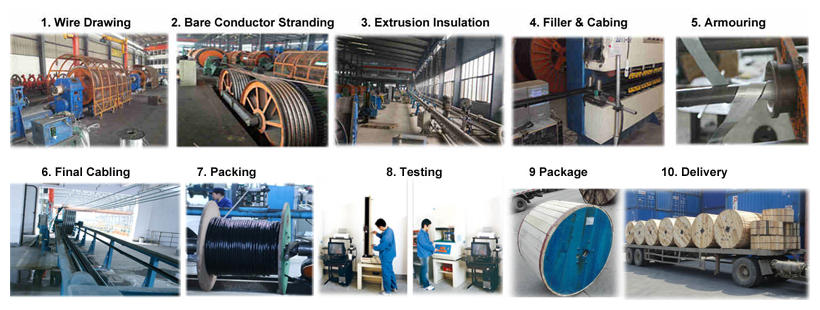 huadong 9 core screened cable production process